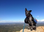 Asher hiking the Crags 2013