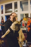 2013, French BullDog Meet Up at Republic of Paws
