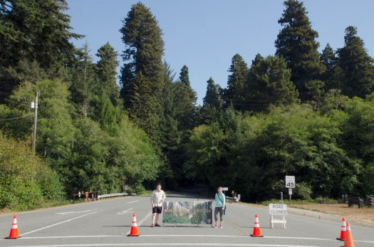 Sept 2014 Redwoods_091314_23511