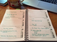 Weekly Blog Schedule View