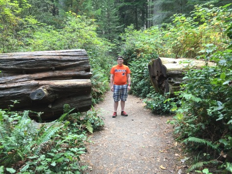 Hiking Northern California