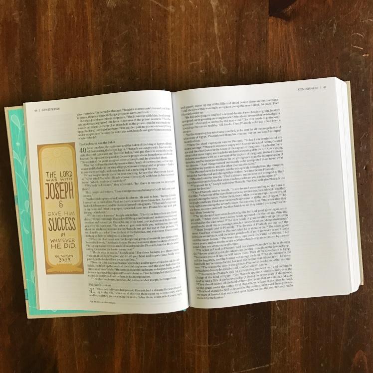 Beautiful Word Bible NIV
