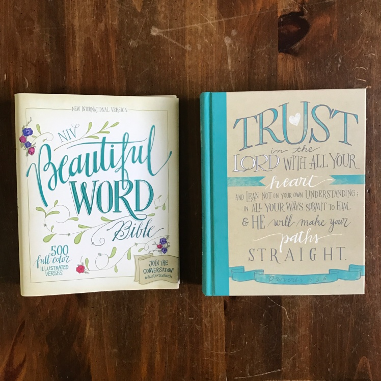 Beautiful Word Bible NIV