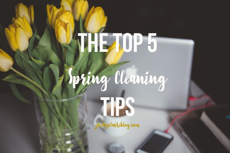 The top 5 spring cleaning tips on Adventurous Shelby