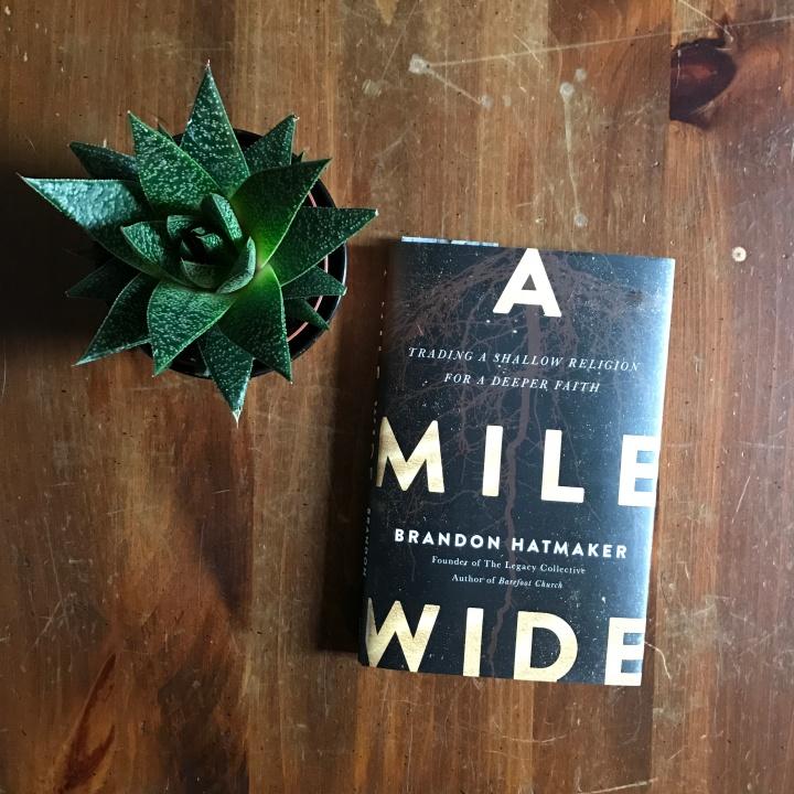 A Mile Wide | Adventurous Shelby