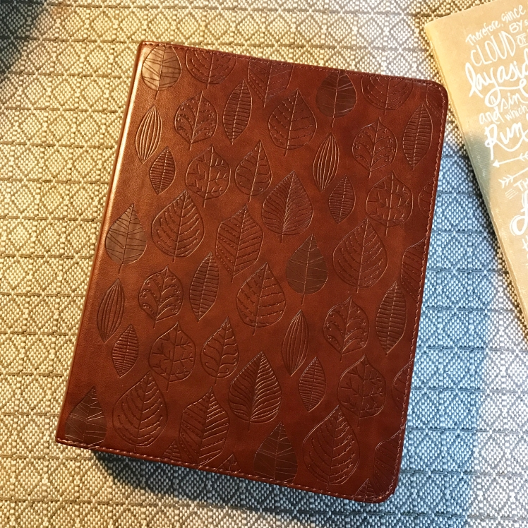 esv-leaf-faux-leather-journaling-bible